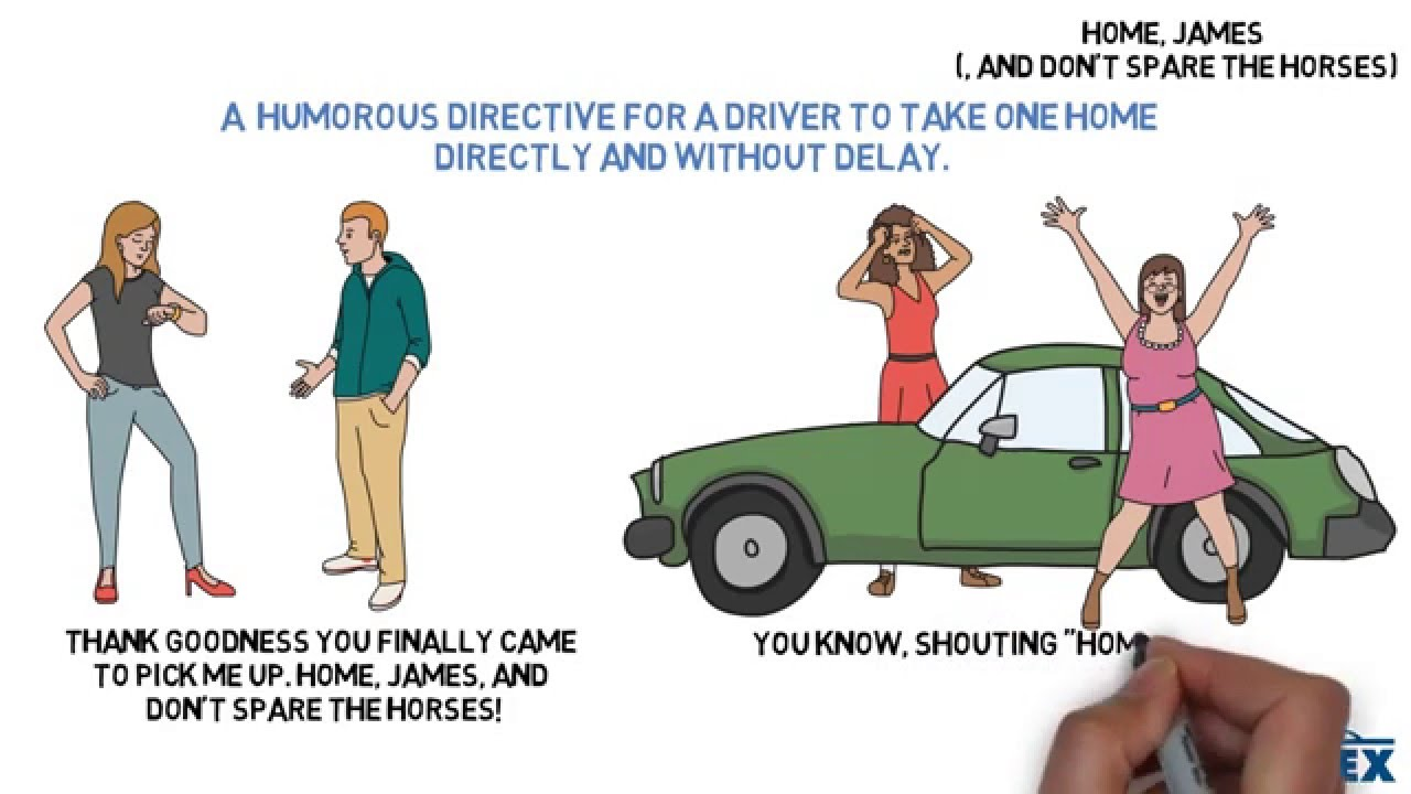 Don't spare the horses – Idiom of the Day